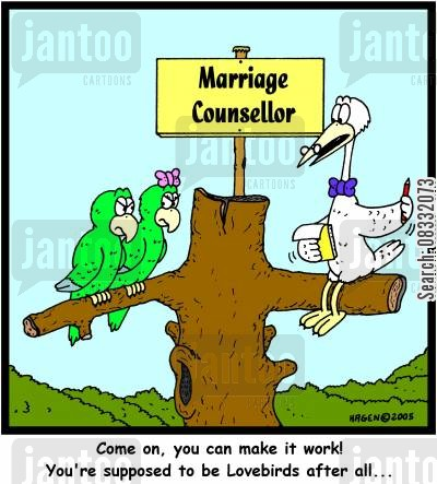 guidance counsellor cartoon humor: 'Come on, you can make it work! You're supposed to be Lovebirds after all...'