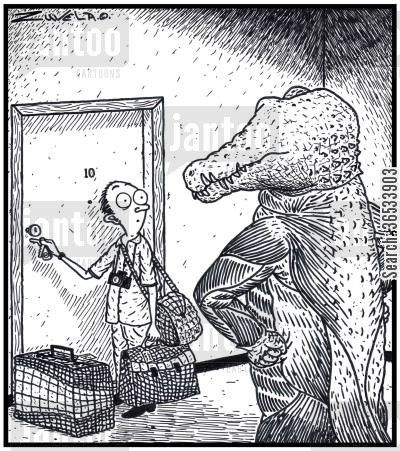 pelt cartoon humor: An angry skinless Crocodile has finally found the person who has his former skin used for bags and suitcases.