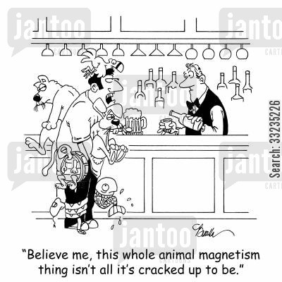 magnetism cartoon humor: 'Believe me, this whole animal magnetism thing isn't all it's cracked up to be.'