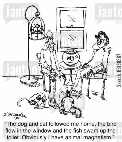 stray dog cartoon humor: 'The dog and cat followed me home, the bird flew in the window and the fish swam up the toilet. Obviously I have animal magnetism.'