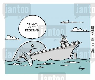 aquatic cartoon humor: 'Sorry, just resting.'