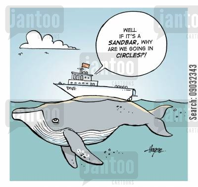 sand banks cartoon humor: 'Well if it's a sandbar, why are we going in circles?!'