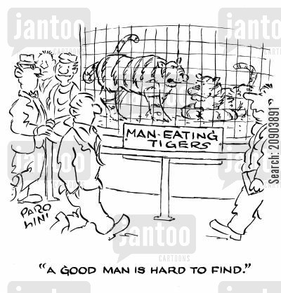 man eaters cartoon humor: Man-eating Tigers: 'A good man is hard to find.'