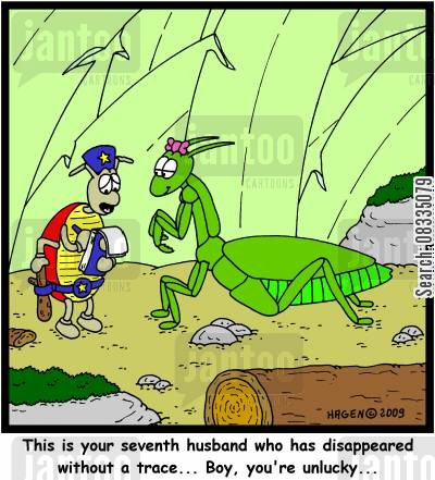 disappeared cartoon humor: 'This is your seventh husband who has disappeared without a trace... Boy, you're unlucky...'
