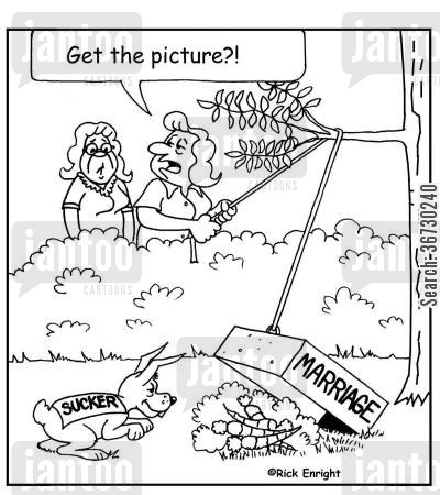 suckers cartoon humor: 'Get the Picture?'