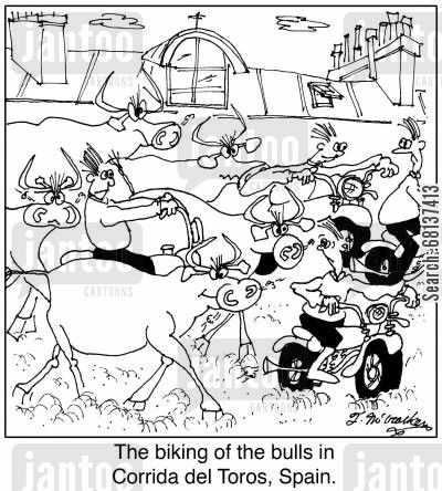 bull fighting cartoon humor: The biking of the bulls in Corrida del Toros, Spain.