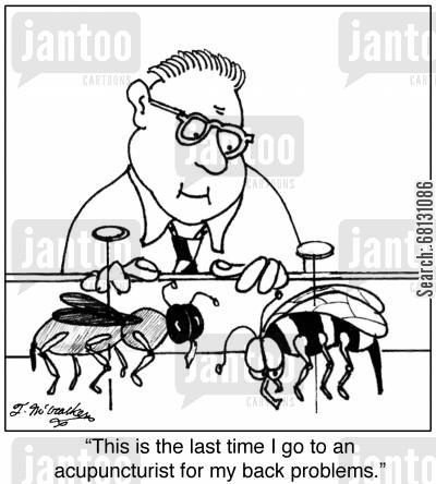 alternative therapy cartoon humor: This is the last time I go to an acupuncturist for my back problems.