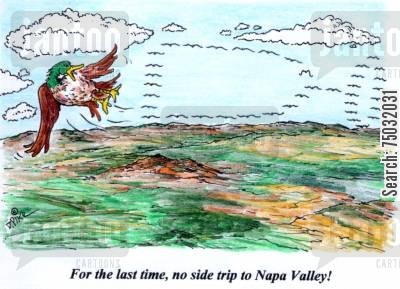 migrations cartoon humor: 'For the last time, no side trip to Napa Valley!'