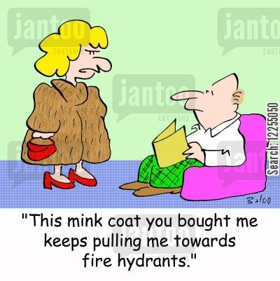 mink coat cartoon humor: 'This mink coat you bought me keeps pulling me towards fire hydrants.'
