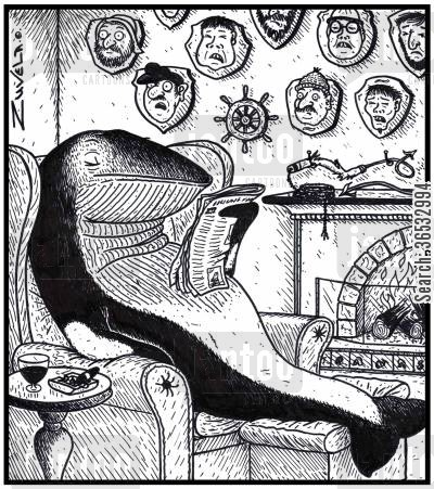 flattened cartoon humor: A Minke whale enjoying his newspaper in front of his trophies of Whalers and Harpooners.
