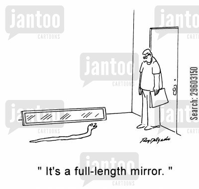 reflections cartoon humor: 'It's a full-length mirror.'