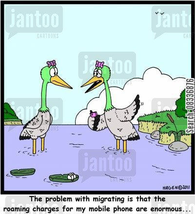 phone bill cartoon humor: 'The problem with migrating is that the roaming charges for my mobile phone are enormous...'