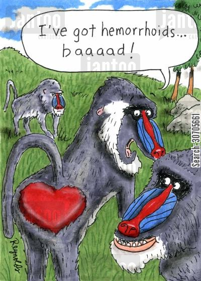 baboons cartoon humor: 'I've got hemorrhoids . . . baaad!'