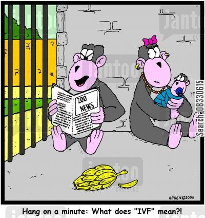 ivf cartoon humor: Hang on a minute: What does 'IVF' mean?