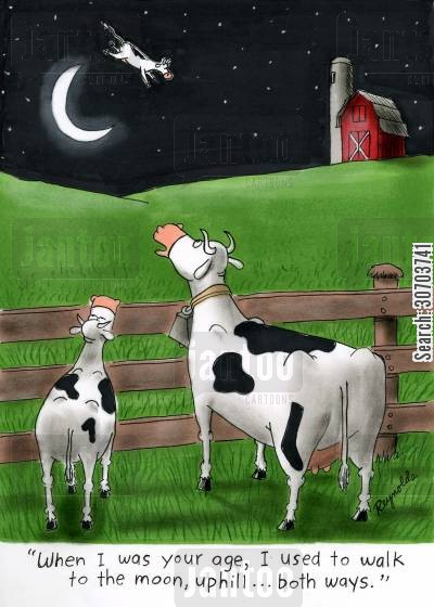 cow bell cartoon humor: 'When I was your age, I used to walk to the moon, uphill...both ways.'