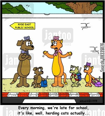 schoolkid cartoon humor: 'Every morning, we're late for school, it's like, well, herding cats actually...'