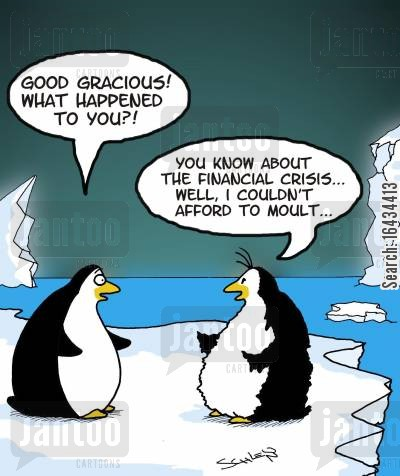 moults cartoon humor: 'You know about the financial crisis... well, I couldn't afford to moult...'
