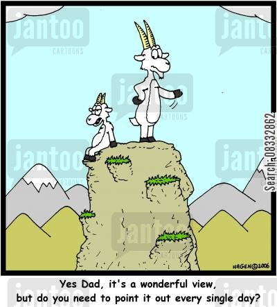 sheeps cartoon humor: 'Yes Dad, it's a wonderful view, but do you need to point it out every single day?'