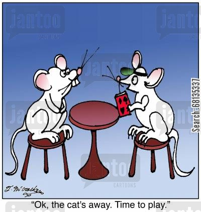 ratter cartoon humor: 'Ok, the cat's away. Time to play.'