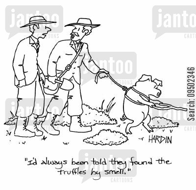 delicacy cartoon humor: 'I'd always been told they found the truffles by smell.'