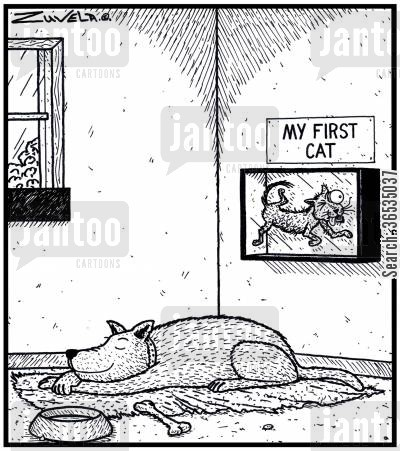 framed cartoon humor: A Dog proudly displaying his first ever Cat he caught