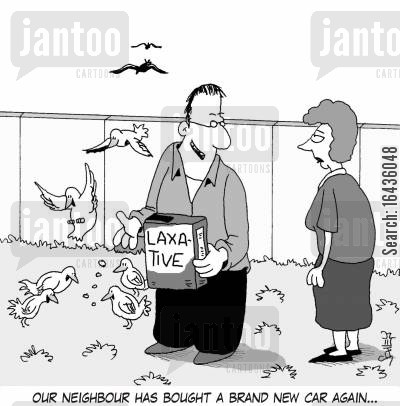 bird poo cartoon humor: 'Our neighbour has bought a new car again...'