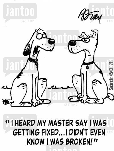 neutered cartoon humor: 'I heard my master say I was getting fixed...I didn't even know I was broken!'