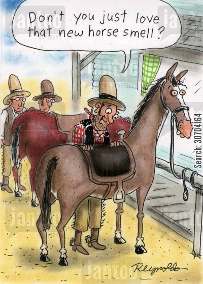 new car smell cartoon humor: 'Don't you just love that new horse smell?'