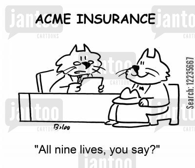 life insurance policies cartoon humor: 'All nine lives, you say?'