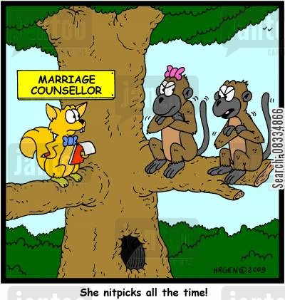 arriage guidance cartoon humor: 'She nitpicks all the time!'