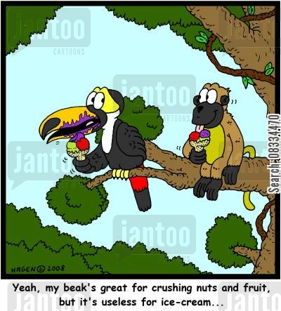 toucan cartoon humor: 'Yeah, my beak's great for crushing nuts and fruit, but it's useless for ice-cream...'