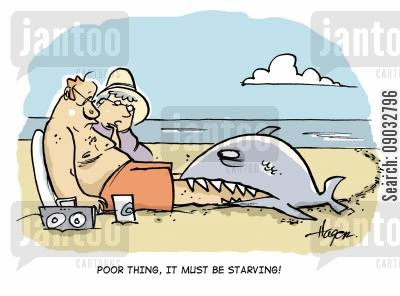 shark bits cartoon humor: Poor thing, it must be starving!