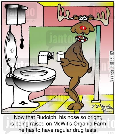 organic farming cartoon humor: Now that Rudolph, his nose so bright, is being raised on McWit's Organic Farm he has to have regular drug tests.