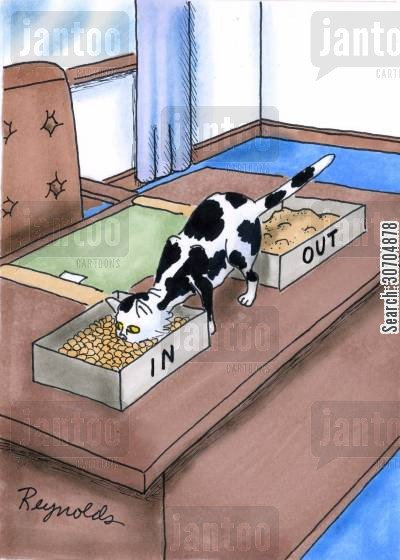 organises cartoon humor: In and Out cat trays.
