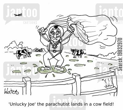 cowpies cartoon humor: 'Unlucky Joe' the parachutist lands in a cow field!