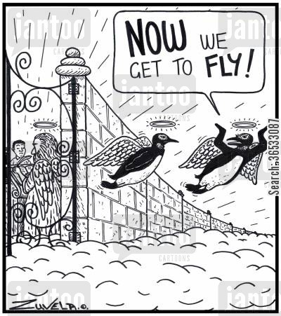 dream come true cartoon humor: Penguin: 'NOW we get to FLY!'