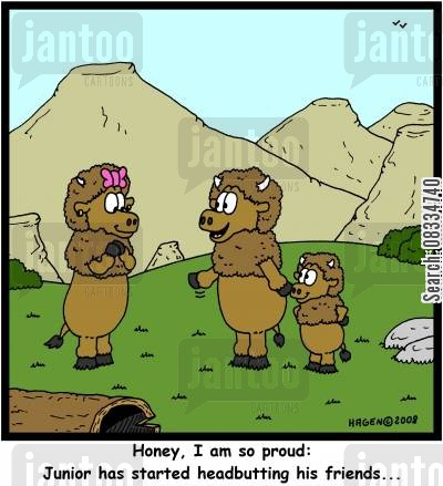 head butt cartoon humor: 'Honey, I am so proud: Junior has started headbutting his friends...'