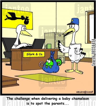 chameleon cartoon humor: 'The challenge when delivering a baby chameleon is to spot the parents...'