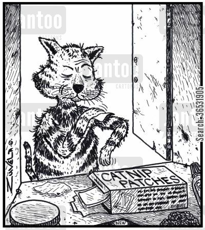 nicotine patch cartoon humor: A slightly disgruntled cat sticking on a Catnip patch.