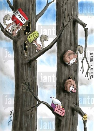 fat cartoon humor: Squirrels eating different types of nuts.