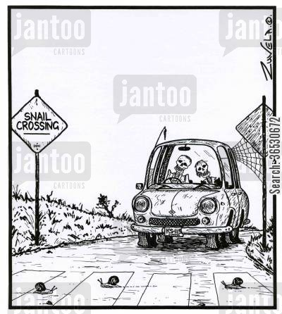 pedestrians cartoon humor: Snail Crossing - Two skeletons in the car.