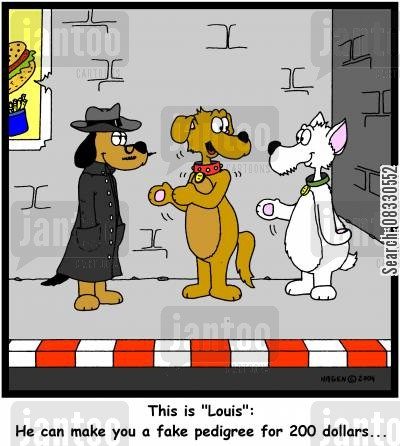 pedigree dogs cartoon humor: 'This is 'Louis': He can make you a fake pedigree for 200 dollars...'