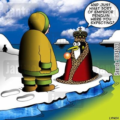 colony cartoon humor: 'And just what sort of Emperor Penguin were you expecting?'
