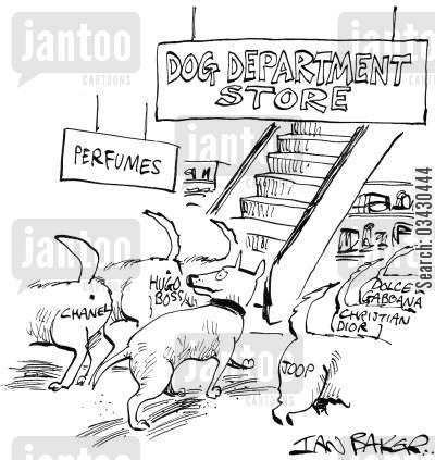 cologne cartoon humor: Dog department store.
