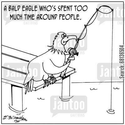 bald eagles cartoon humor: A bald eagle who's spent too much time around people.