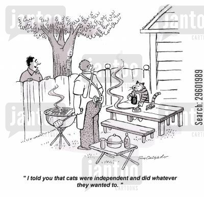 independence cartoon humor: 'I told you that cats were independent and did whatever they wanted to.'