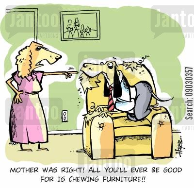 house proud cartoon humor: 'Mother was right! All you'll ever be good for is chewing furniture!!'