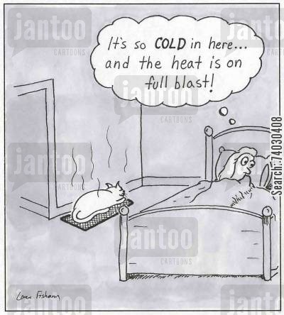cat behavior cartoon humor: 'It's so cold in here, and the heat is on full blast!'