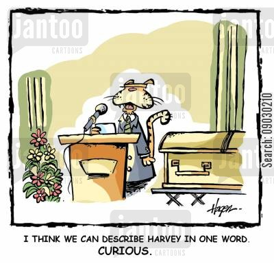 curosity killed the cat cartoon humor: 'I think we can describe Harvey in one word. Curious.'