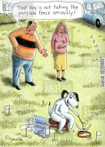 invisible fences cartoon humor: 'That dog is not taking the invisible fence seriously.'